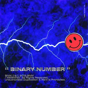 Binary Number